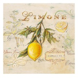Tuscan Lemon Posters by Angela Staehling
