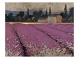 Lavender Days Posters by James Wiens