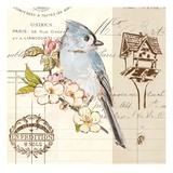 Bird Sketch 4 Kunstdrucke von Chad Barrett