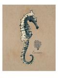 Vintage Linen Seahorse Prints by  Regina-Andrew Design