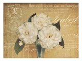 Heirloom Bouquet 1 Posters by Cristin Atria
