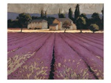 Lavender Weekend Lámina giclée por Wiens, James