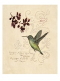Filigree Hummingbird Affiches par Chad Barrett