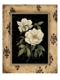 Silver Peony Giclee Print by Regina-Andrew Design 