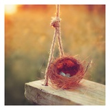 Swing and Nest Giclee Print by Mandy Lynne