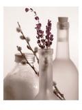 Lavender Bottles Poster von Julie Greenwood