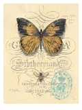 Honeybee Papillon Giclee Print by Chad Barrett