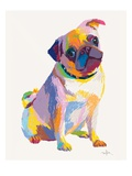 Pug Sketch Poster by Patti Mollica