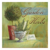 Garden Herbs Prints by Angela Staehling
