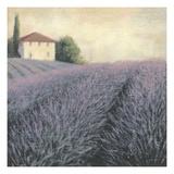 Détail de collines de lavande Art par James Wiens