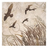 Birds in Flight 2 Giclee Print by Melissa Pluch