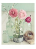 Blooming Bottles Print by Mandy Lynne
