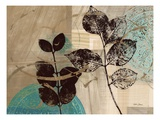 Leaf Kaleidescope 2 Prints by Matina Theodosiou