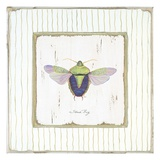 Stink Bug Giclee Print by Jan Cooley