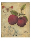 Plum Recollection Giclee Print by Regina-Andrew Design