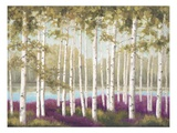 Plum Forest Floor Prints by Jill Schultz McGannon