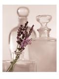 Lavender Detail Kunst von Julie Greenwood