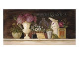 Marche Antica Vignette Poster by Angela Staehling