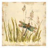 Dragonfly Meadow Giclee Print by Bella Dos Santos