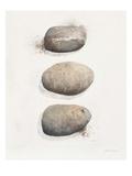 Field Study Stone Prints by Jurgen Gottschlag