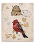 Ruby Collection 1 Kunstdruck von Chad Barrett