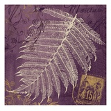 Lavender Fern Giclee Print by Booker Morey