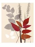 October Leaf 2 Affiches par Bella Dos Santos