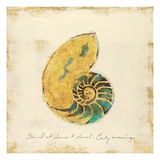 Gilded Ocean Nautilus Poster by  Studio 5