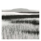 Nut Island, Salt Marsh Posters by Dorothy Kerper Monnelly