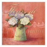 Fleurs De Provence Prints by Angela Staehling