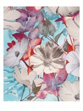 Lovely Bloom 1 Giclee Print by Matina Theodosiou