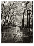 April Showers Prints by Toby Vandenack