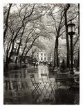 Lluvias de abril Láminas por Toby Vandenack