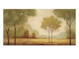 Serene Panorama Giclee Print by Jill Schultz McGannon