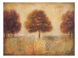 Tapestry Fields I Giclee Print by Ivo Stoyanov