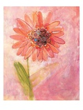 Lyrical Flower 1 Print by Robbin Rawlings