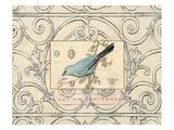 Songbird Etching 2 Poster von Chad Barrett