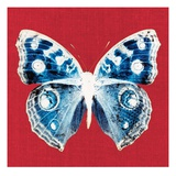 Scarlet Red Pop Butterfly Giclee Print by Christine Caldwell