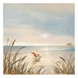 Beach Cottage Giclee Print by Paulo Romero