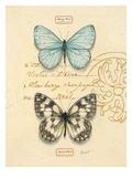 Duet Papillon Art by Chad Barrett