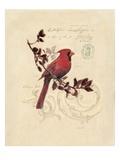 Filigree Cardinal Poster von Chad Barrett
