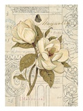 Magnolia Etching Posters af Chad Barrett