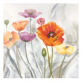 Breezy Poppies 2 Prints by  DB Studios