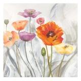 Breezy Poppies 2 Prints by  DB Studios