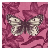 Butterfly Glory Print by Bella Dos Santos