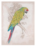 Chartreuse Tropical Giclee Print by Chad Barrett
