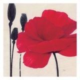 Rouge Prints by  Ivo