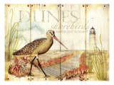 Dunes Shorebird Print by Mary Escobedo