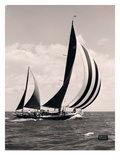 Bloodhound's Sails Giclee Print by  Mystic Seaport Museum
