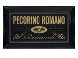 Pecorino Romano Prints by Angela Staehling